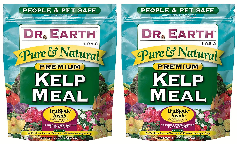 Dr. Earth 725 Kelp Meal 1-0. 5-2 2.5 Boxed, 2-Pound (Вundlе оf Тwо)