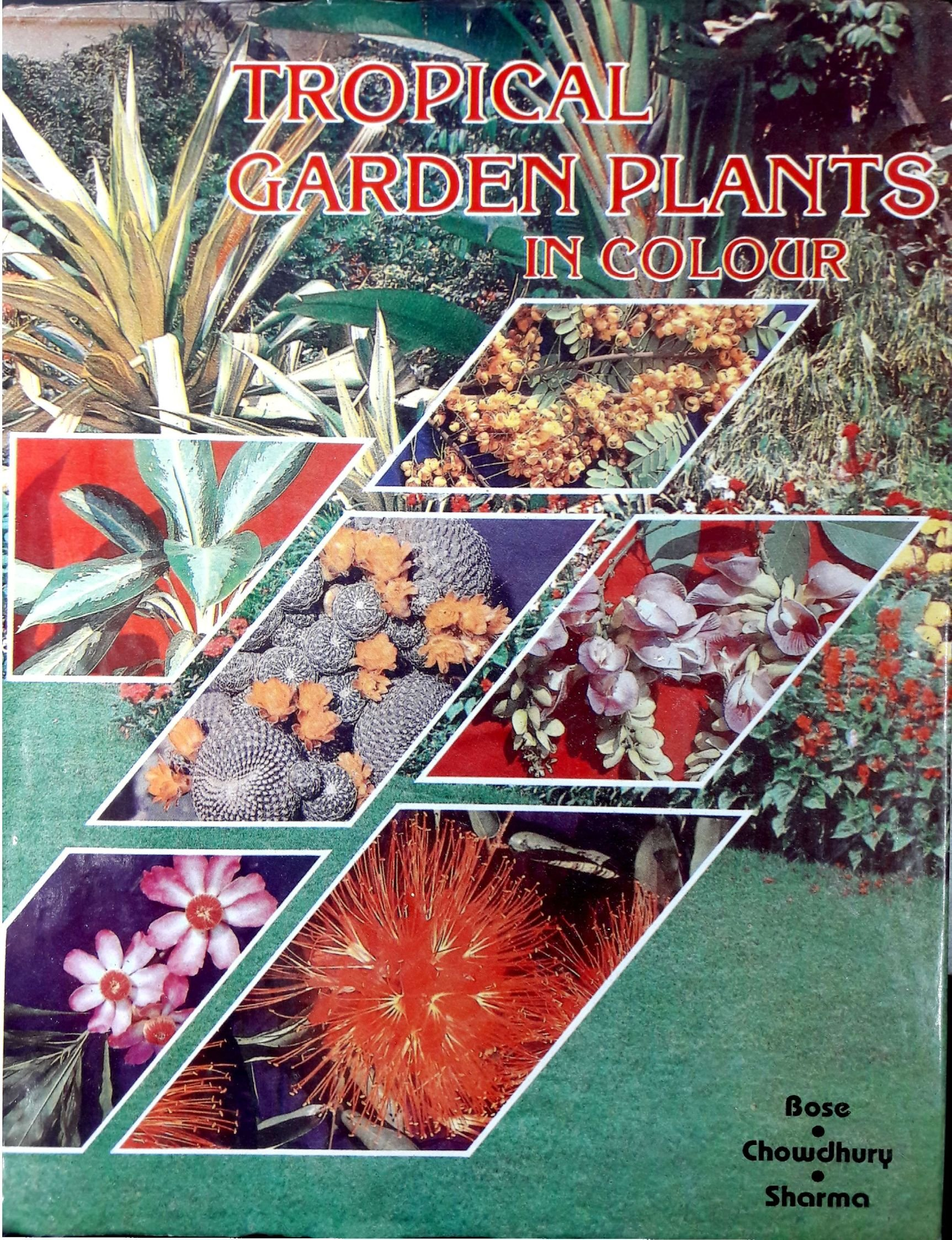 Amazonin Buy Tropical Garden Plants In Colour Book Online At Low Prices India