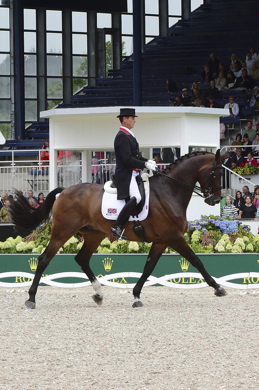 LeMieux Pro Sport Dressage Square D-Ring Dressurschabracke