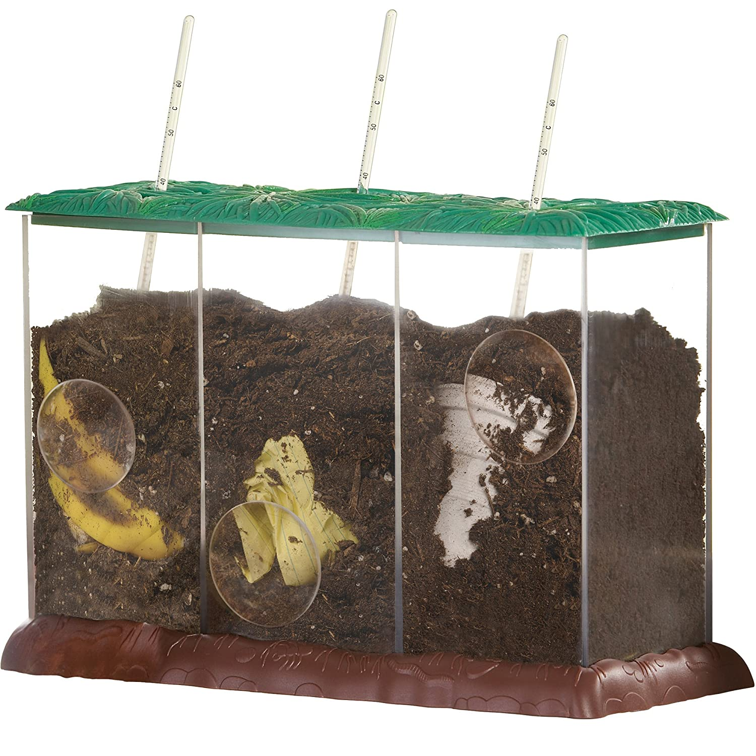 Learning Resources- Contenedor de Compost Transparente See ...