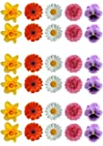 30 Gorgeous Mixed Spring Flower Selection Edible Wafer Paper Cake Toppers Decorations - Daffodil Daisy Gerbera Pansy