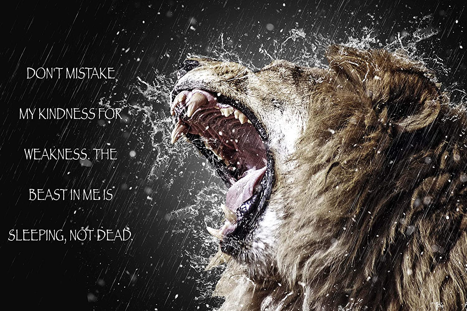 Ezposterprints Most Popular Lion Theme Quote Posters Power Strength Brave Beast Motivational Quotes Poster Printing Wall Art Print For Home
