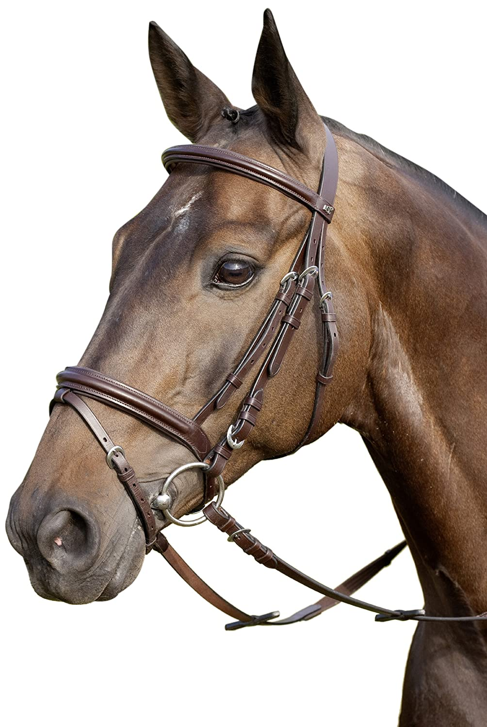 USG Bridle Classico Flash Noseband with Web Reins, Pony, Silver Fittings/ Black Leather UNJFB 2000