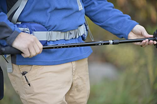 ALPS Mountaineering Explorer Trekking Pole