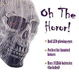 Halloween Haunters Hanging Life-Size Human Skull