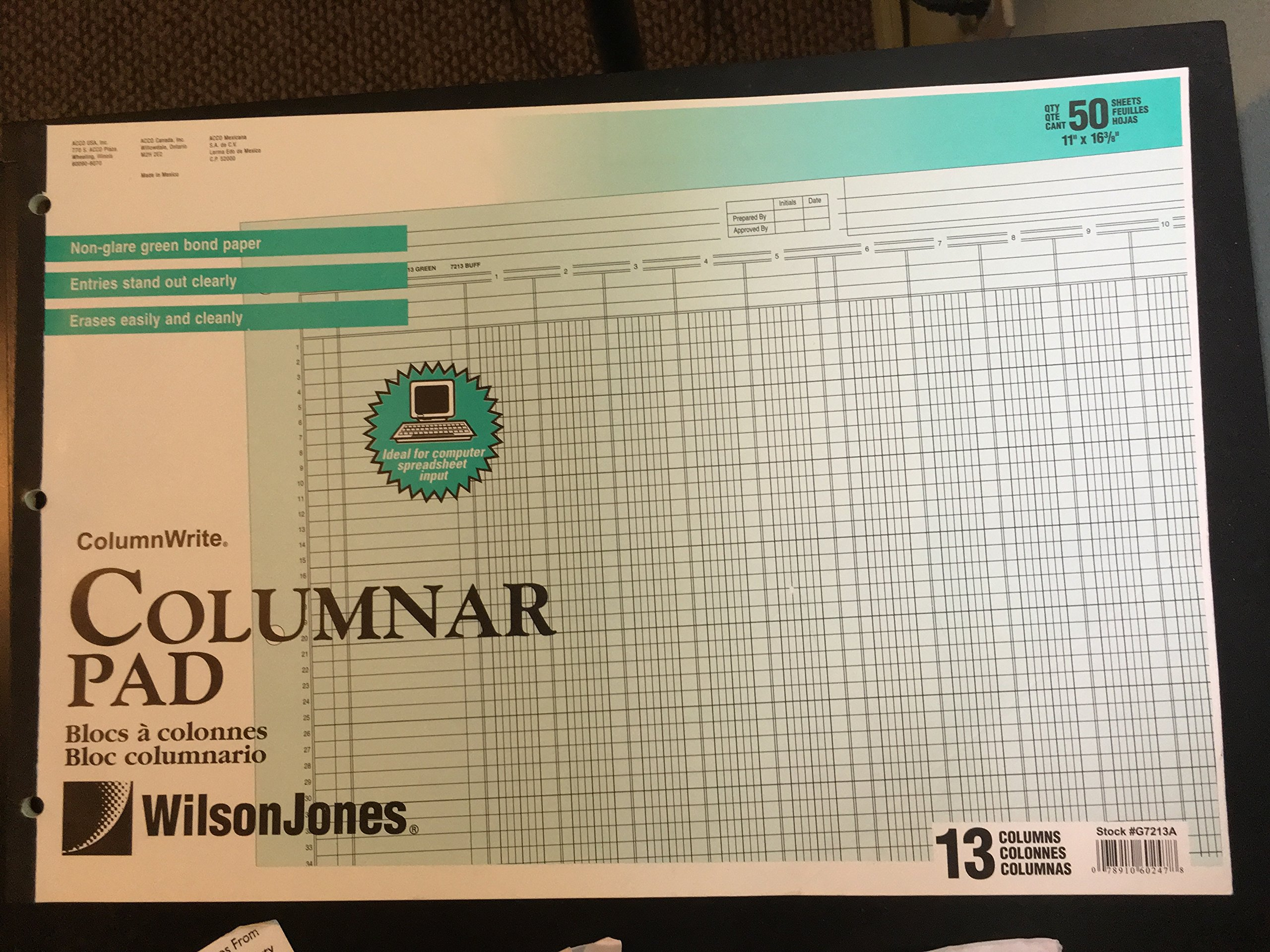 Wilson Jones Accounting Pad/13 8-Unit Columns, 11 x 16.37 Inches, 50-Sheet Pad (G7213A), 2 Packs
