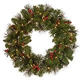 National Tree 24 Inch Crestwood Spruce Wreath
