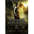Accidental Warrior: Book Two in the LitRPG Accidental Traveler Adventure