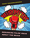 Neuromyths: Debunking False Ideas About The Brain