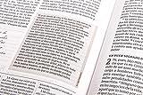 RVR 1960 Biblia de estudio Spurgeon, negro piel