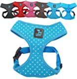 No Pull Small Dog - Pet Harness – Breathable Dotty Cotton Design – Range of Colours and Sizes (Blue Small) (LSW Pet Design)