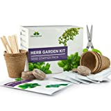 Herb Garden Kit - Grow Your Own Kitchen Herbs Indoors - Gardener's Gift Set - 5 Herb Seed Packets, Basil, Parsley, Thyme, Coriander, Dill and Herb Scissors with 3 Blades