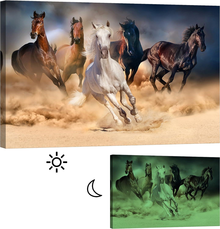 Cuadro en Lienzo Startoshop, fotoluminiscente lienzo,pinturas murales, Decoración, Caballos en una nube de polvo, Categoría Animales, 80 cm x 120 cm
