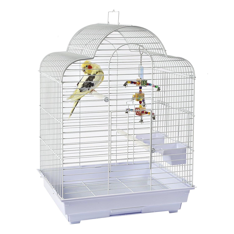 Rainforest Brasilia Cockatiel Small Parakeet Small Conure Small Bird cage