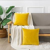 Emooqi Cojines Terciopelo para Sofa, 40x40cm Decoración Cuadrado Fundas de Almohada 2 Piezas Funda Cojin para Cojines…