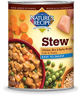 Natures recipe canned dog food for adult dog easy to digest lamb natures recipe wet dog food cuts in gravy forumfinder Images