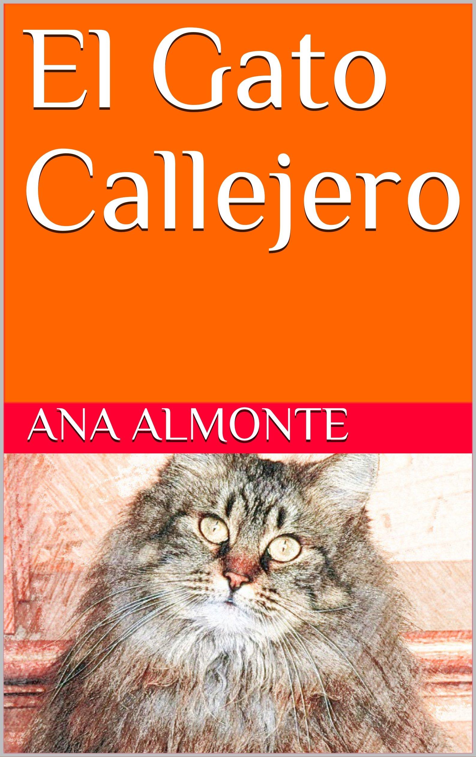 El Gato Callejero (amor propio)