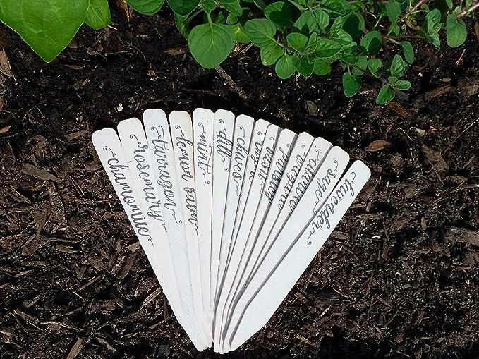 Paquete completo de 14 estacas ecológicas para decoración de casas ...