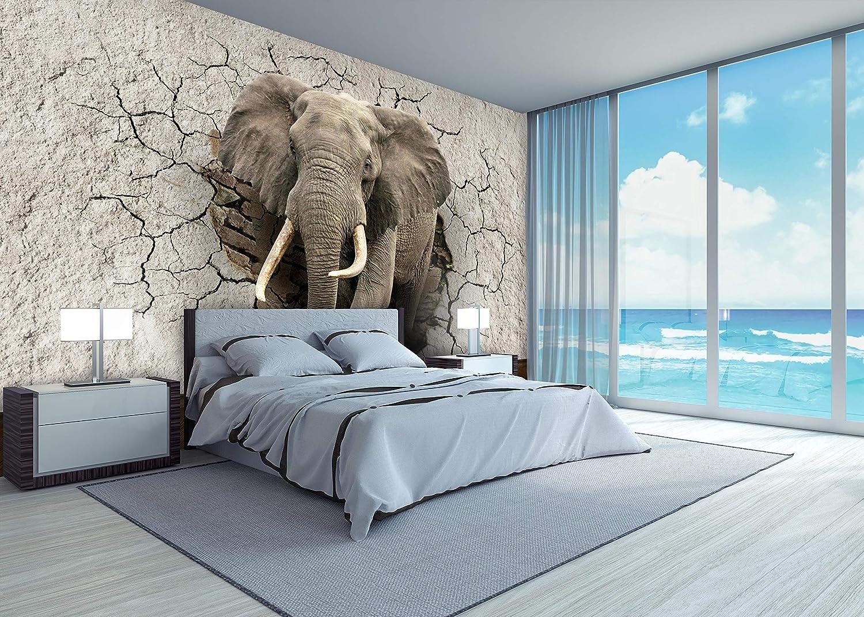 mur non tiss/és Animal papiers peints de motivation pause M1238 wandmotiv24 Papiers peints Mur d/él/éphant 3D perc/ée L 300 x 210 cm 6 pi/èces muraux