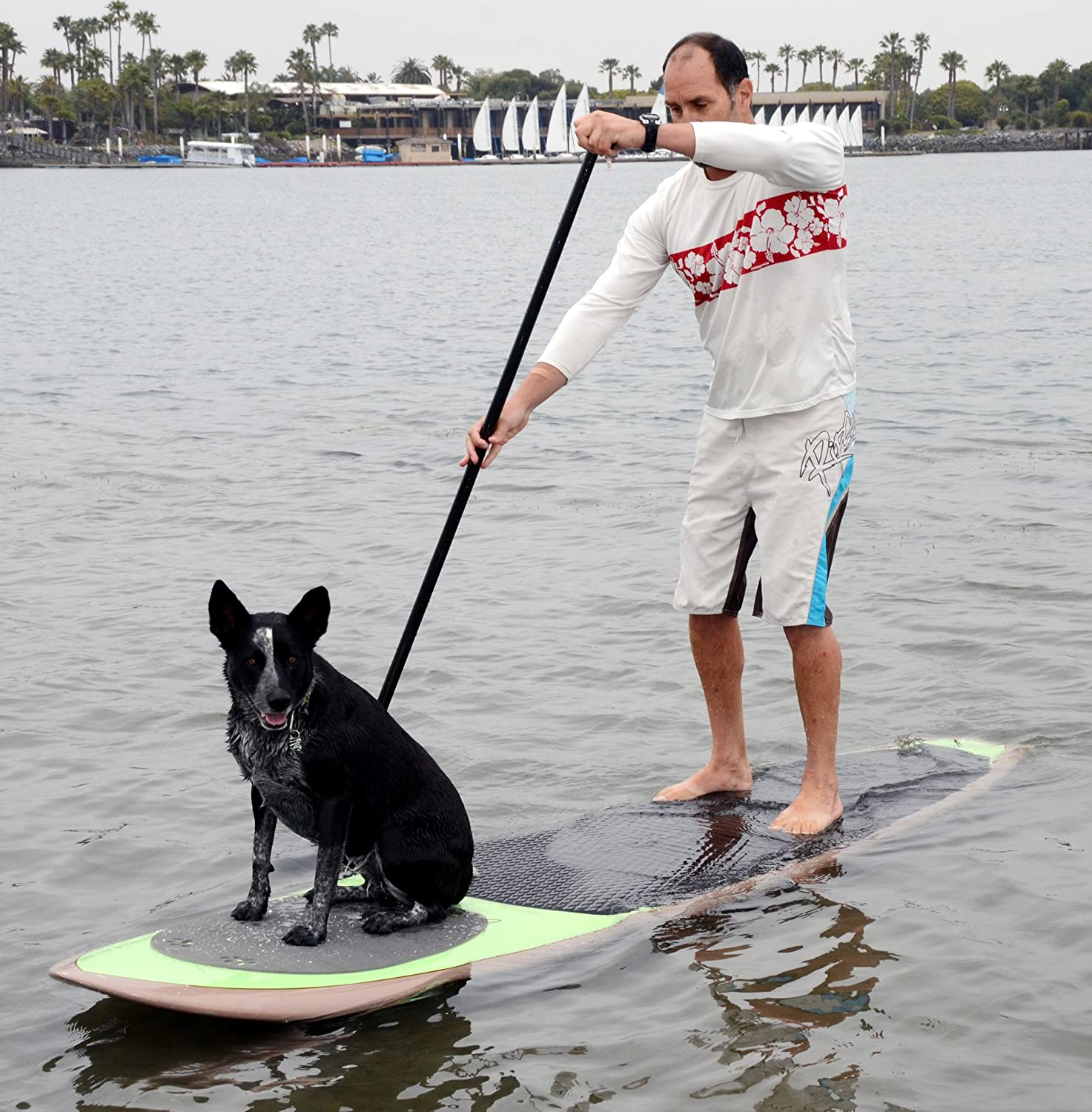 Pup Deck SUP Traction Pad for Dogs Stand Up Paddleboard Deck Padding ( Solid Style ) Better Surf than Sorry PUPDECK-SOLID