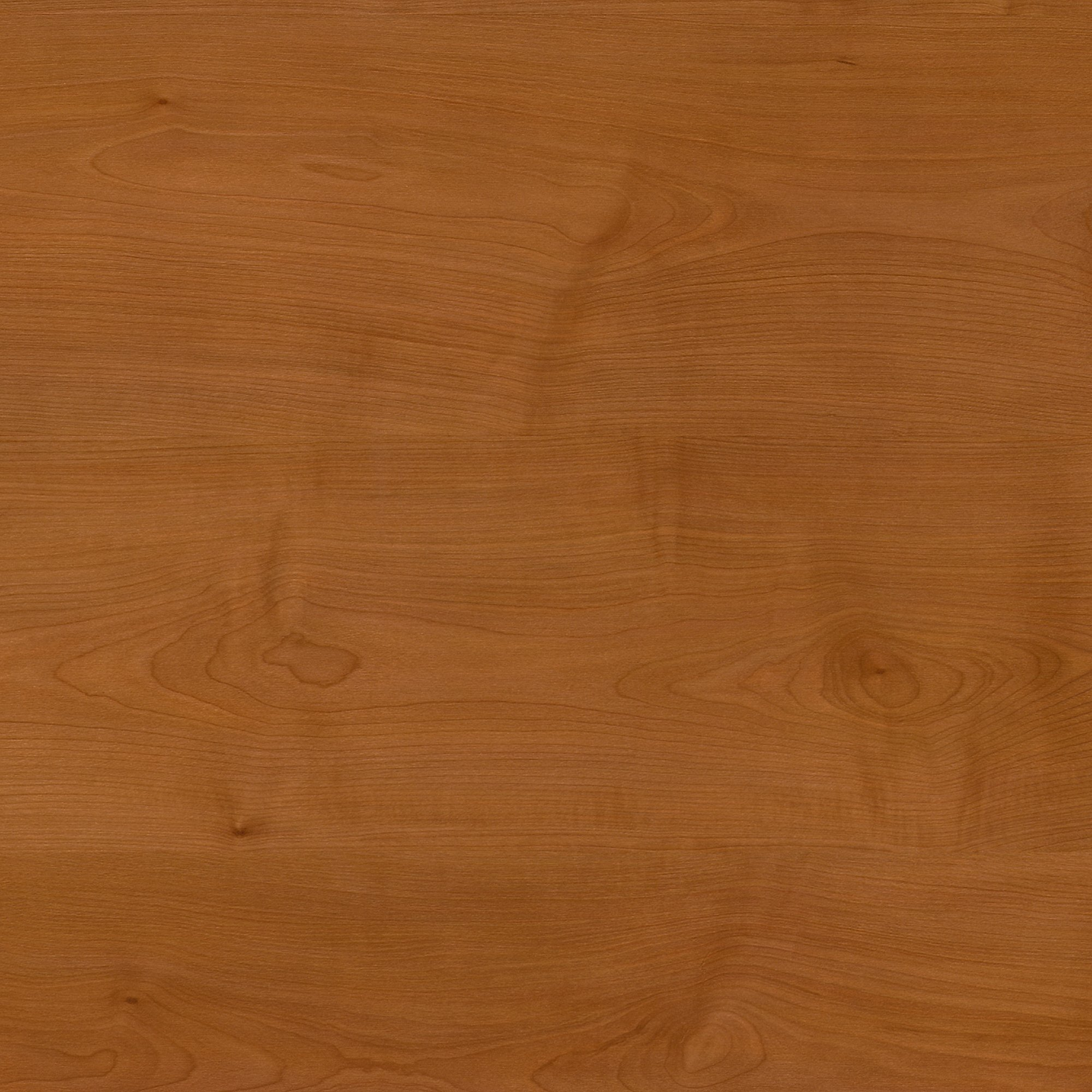 Bush Business Furniture Series A Collection 24W Hutch in Natural Cherry by Bush Business Furniture (Image #4)