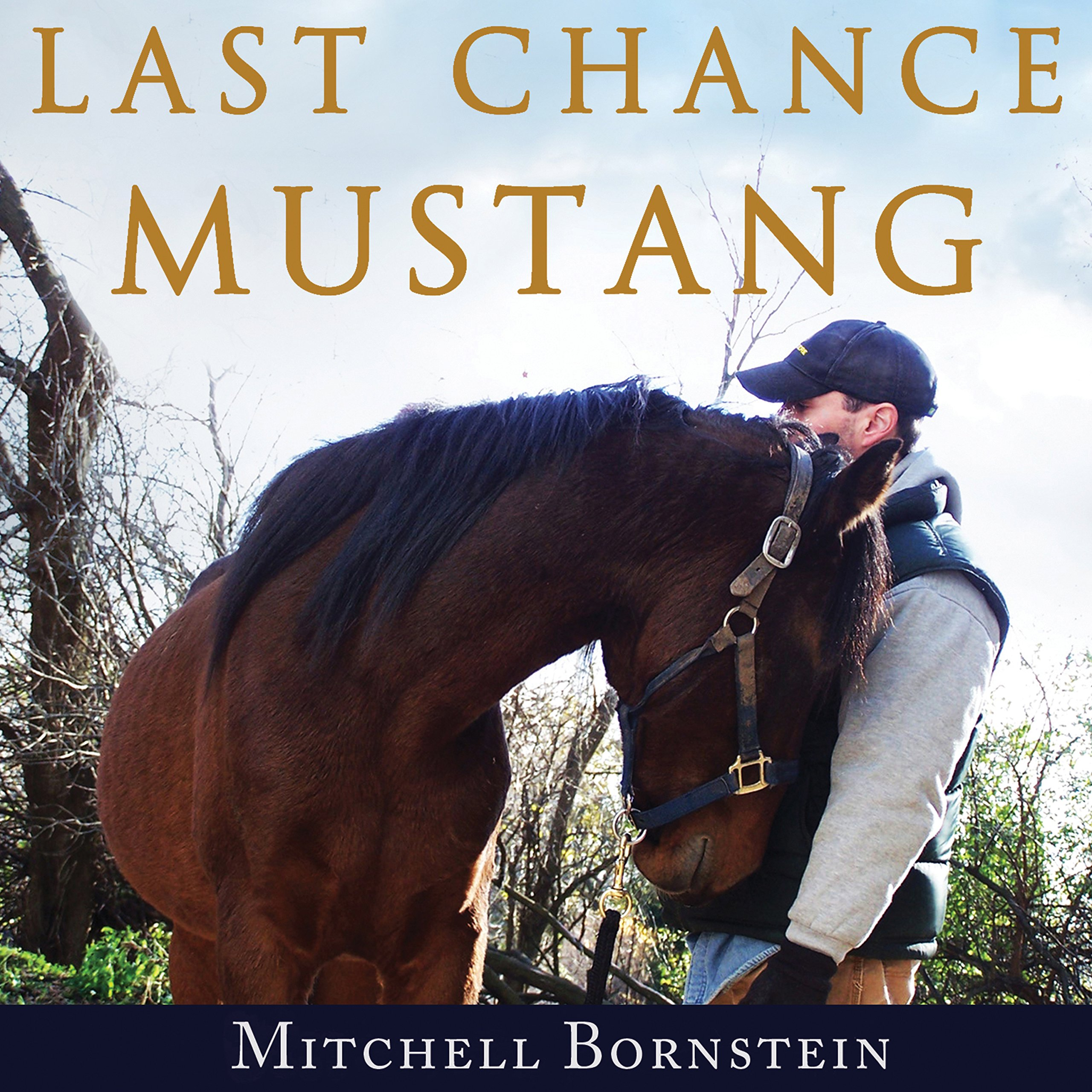 Last Chance Mustang: The Story of One Horse, One Horseman, and One Final Shot at Redemption by Tantor Audio (Image #1)