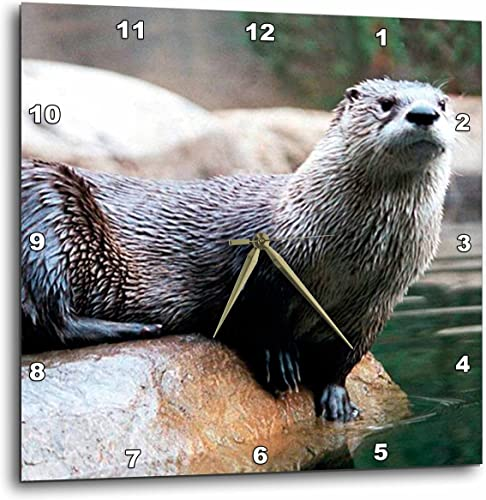 3dRose Otter Wall Clock, 10 by 10-Inch