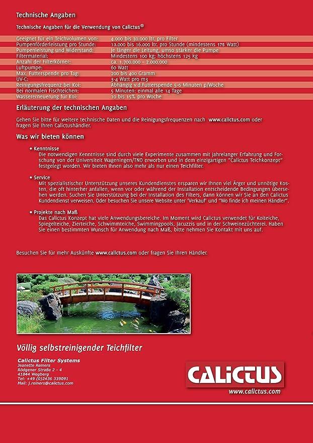 koiteich même nettoyer filtre jardin étang Calictus automatique étang filtre