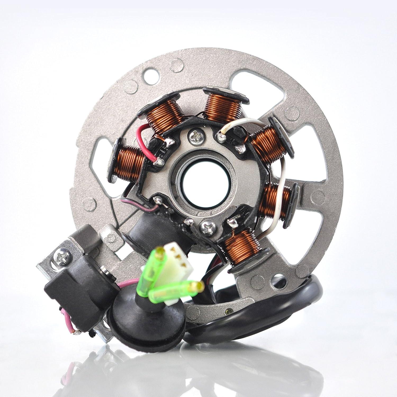 Stator For E-Ton AXL 50 Lightning DXL 90 Sierra RXL 70 90 Viper TXL 50 Thunder/Aprilia Scooter/Polaris Predator Scrambler Sportsman 50 90 2000-2007 OEM Repl.# 0450522 0450523 0451000 0450998 RMSTATOR