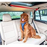 PetSafe Happy Ride Dog Zipline - Back Seat Leash, Great for Travel