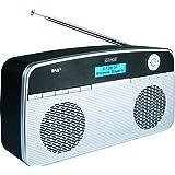 SCHWAIGER -098- Digital Radio DAB / DAB+, tragbar, mit Stab-Antenne und Wecker-Funktion, UKW & DAB Empfang, Betrieb via Netzteil oder Batterie und beleuchtetes LCD Display und automatischer Sendersuchlauf