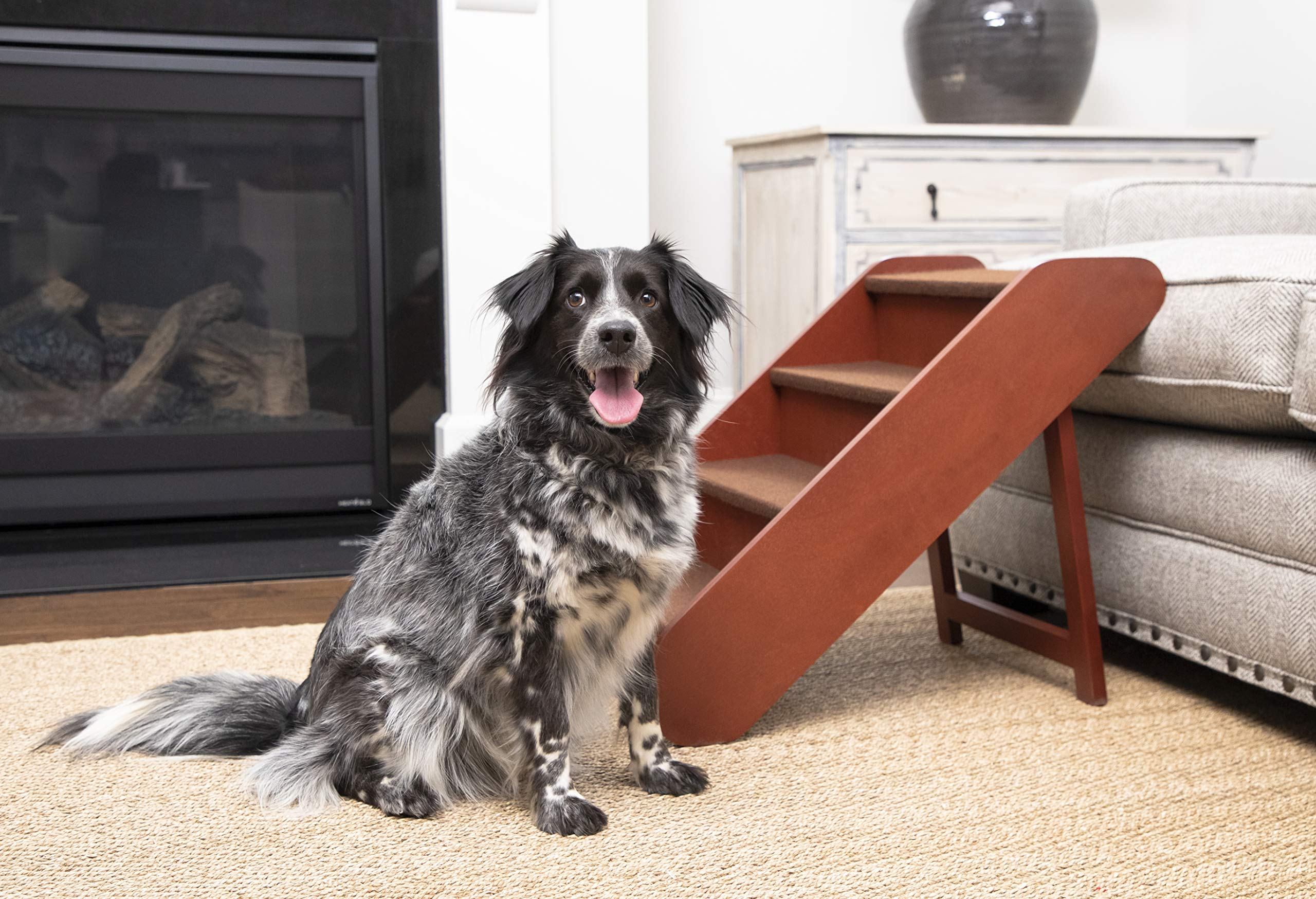 PetSafe Solvit PupSTEP Wood Pet Stairs, Foldable Steps for Dogs and Cats, Best for Small to Medium Pets by PetSafe