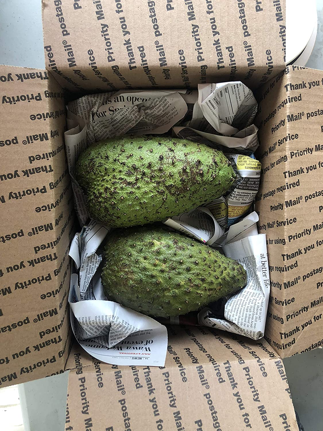 Tropical Importers Fresh Guanabana (Soursop, Graviola) 1-2 Lb Fruit