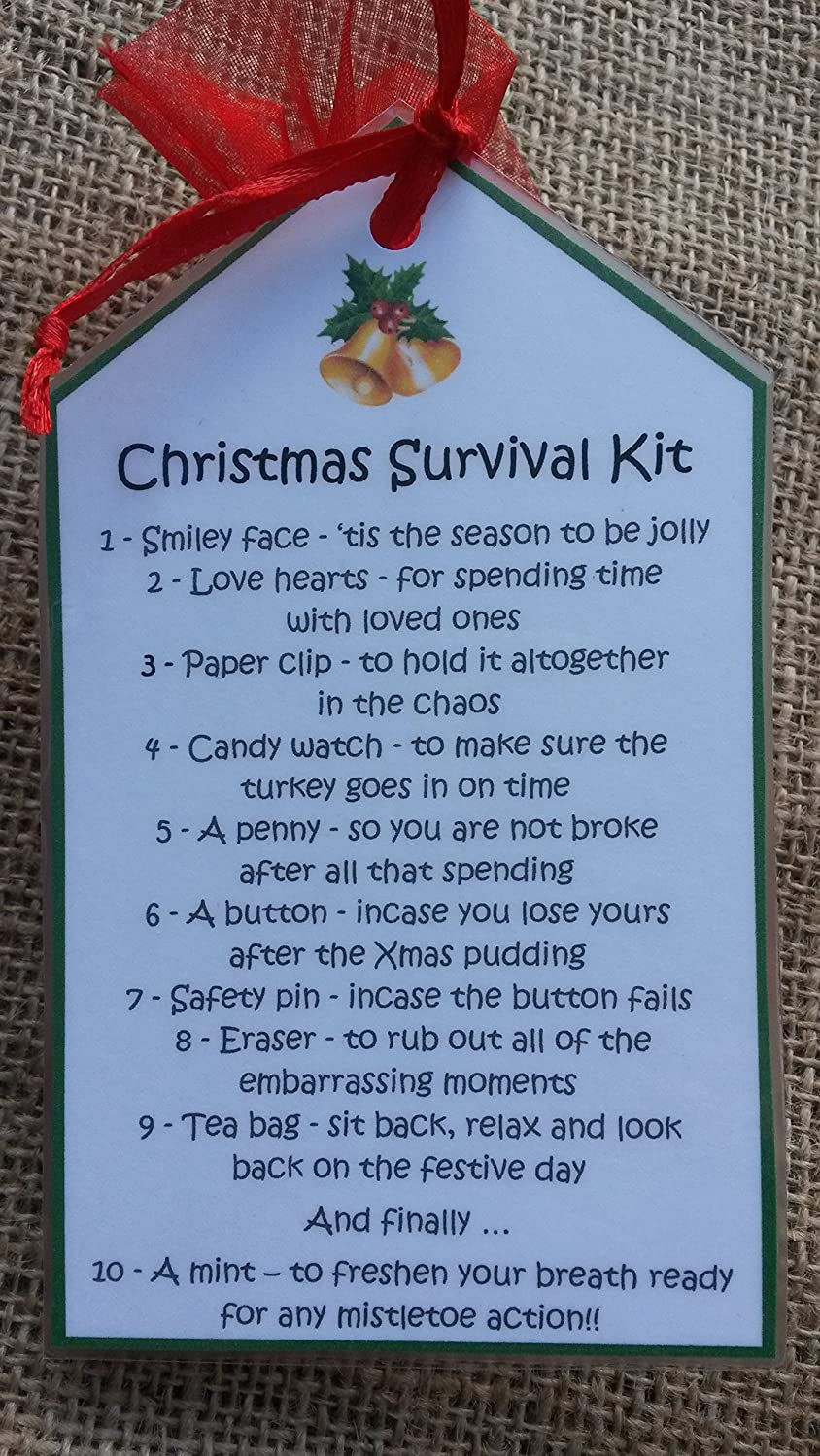 Christmas novelty Survival Kit - Ideal for adults - Perfect fun and unique stocking filler or secret santa present! M&B Stix Pix