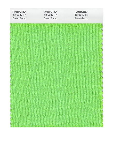 Amazon.com: Pantone 13 – 0340 nailon Brights tarjeta de ...