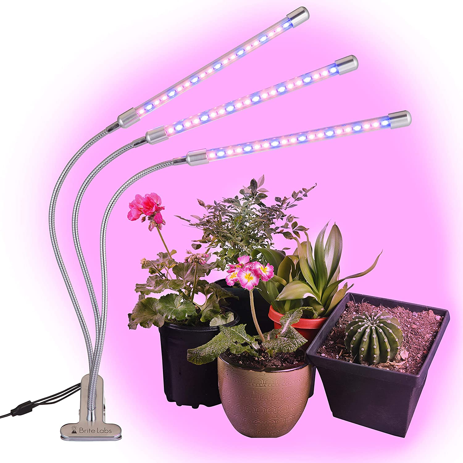BriteLabs LED Grow Lights for Indoor Plants, Triple Head Plant Growing Lamps with 60 Full Spectrum Bulbs, Improvised Timer Function Allows Auto On Off, Adjustable Gooseneck Arms with Desk Clamp