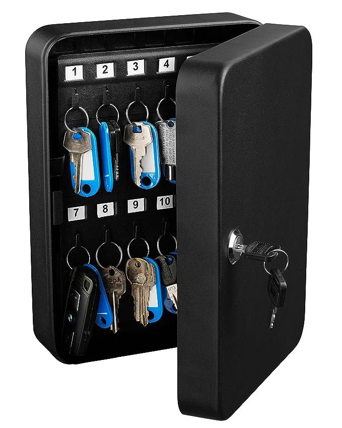 Amazon.com: AdirOffice Caja de seguridad de acero para ...