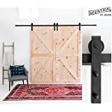 10-Foot Heavy Duty Double Sliding Barn Door Hardware Kit (Black) ▫ Includes Easy Step-By-Step Installation Video ▫ Ultra Quiet, Tested Beyond 100,000 Rolls ▫ Superior Quality