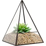 Modern Glass Pyramid Tabletop Succulent Plant Terrarium Box / Air Plant & Cacti Holder Case - MyGift