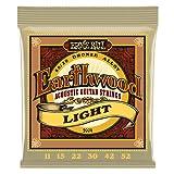 Ernie Ball Earthwood EB2004 011-052 · Saiten Westerngitarre