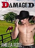 Damaged (Western Cowboy Romance - Darrell's story) (Rancher Romance Book 2)