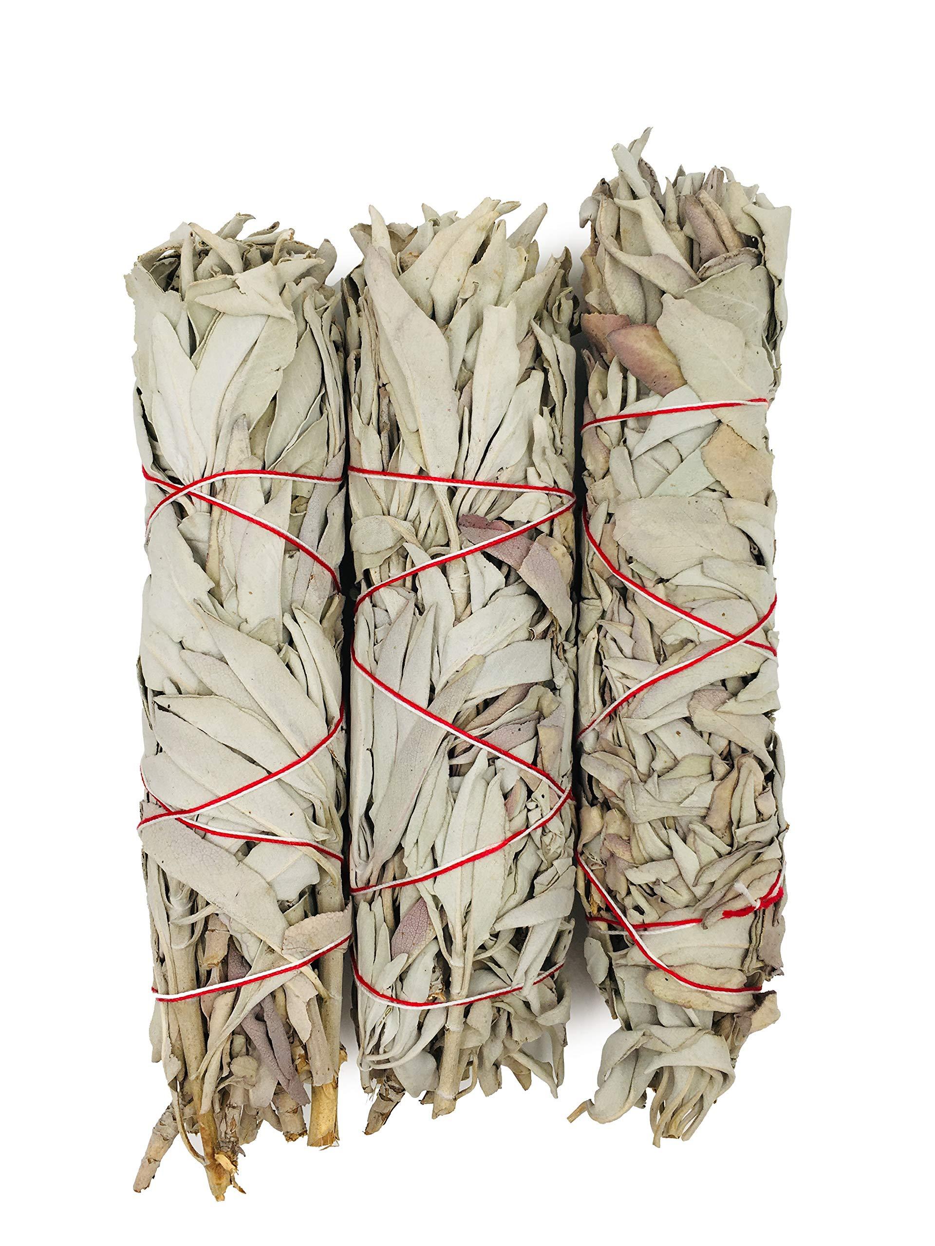 Alternative Imagination Premium, 7 Inch California White Sage Smudge Sticks. by Alternative Imagination