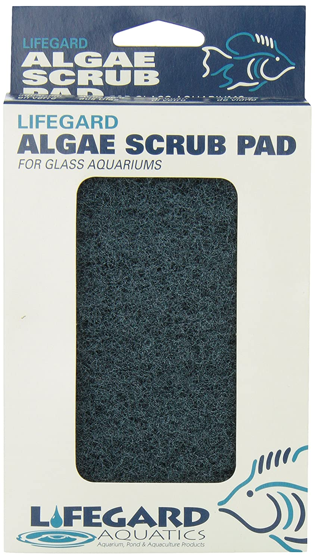 Lifegard Aquatics 4-Inch by 6-Inch Blue Algae Pad R270912