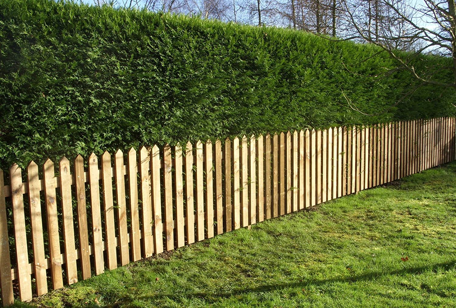 Pointed Top Picket Pales - Treated Garden Fencing 3ft (900mm) High (10) Ruby