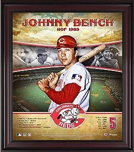Johnny Bench Cincinnati Reds Framed 15