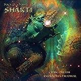 Sacred Chants of Shakti [Import USA]