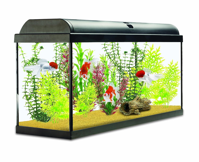 Fish aquarium price in india - Interpet Aquaverse Glass Aquarium Fish Tank Premium Kit 110 L Amazon Co Uk Pet Supplies