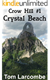 Crystal Beach (Crow Hill Book 1)