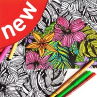 Happy Coloring - Color By Number