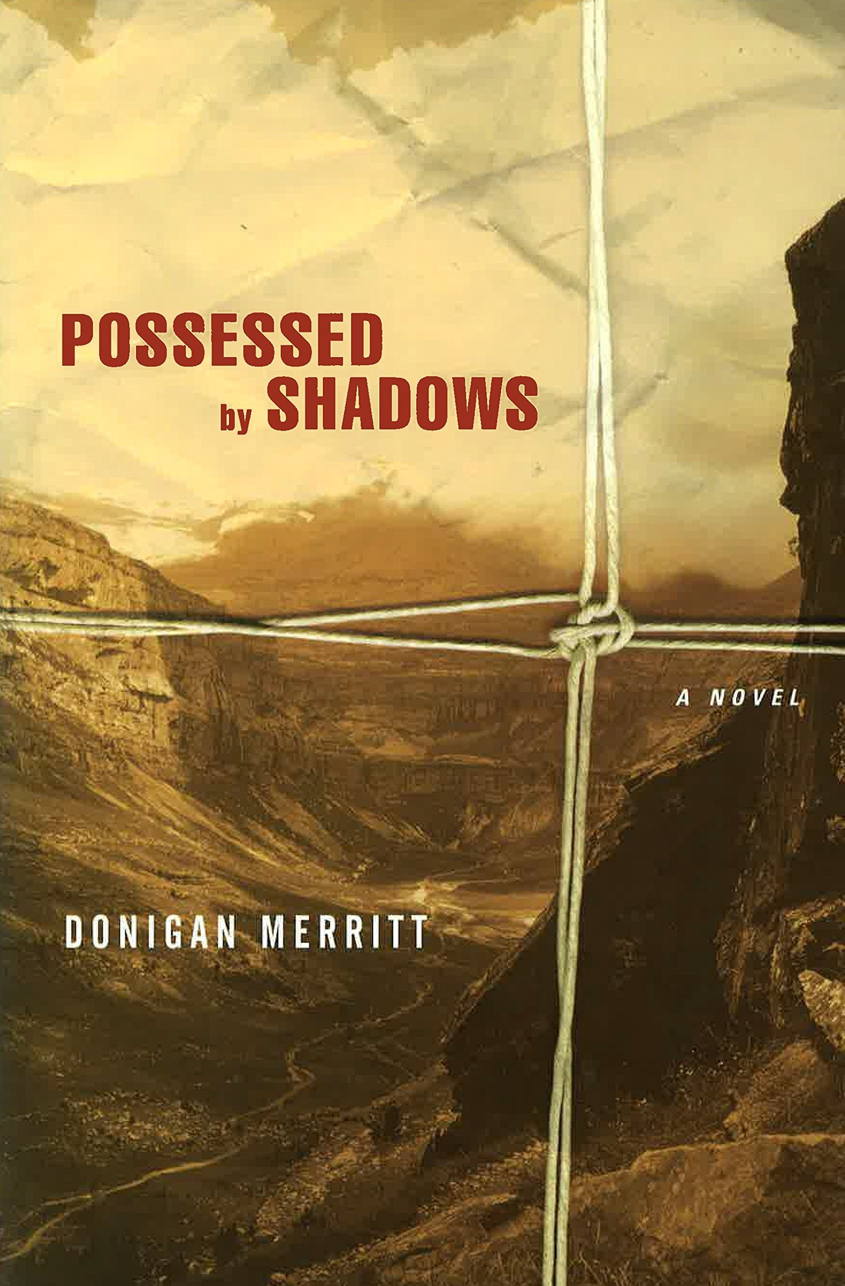 Download Possessed by Shadows pdf